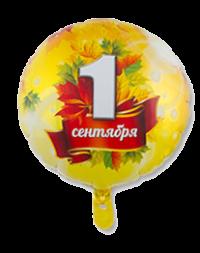 круг «1-е сентября» доставка шаров, воздушные шары, шарики с гелием, воздушные шары, воздушные шары спб