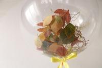 шар баблс «осень» с надписью доставка шаров, воздушные шары, шарики с гелием, воздушные шары, воздушные шары спб
