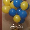 дэйв и стюарт доставка шаров, воздушные шары, шарики с гелием, воздушные шары, воздушные шары спб