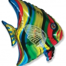 шар рыбка доставка шаров, воздушные шары, шарики с гелием, воздушные шары, воздушные шары спб