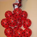 леди баг доставка шаров, воздушные шары, шарики с гелием, воздушные шары, воздушные шары спб